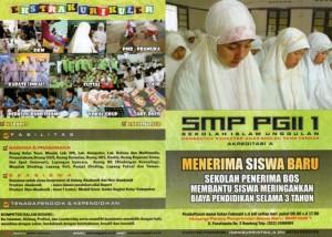 smp pgii 1 a31
