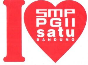 smp pgii 1 a32