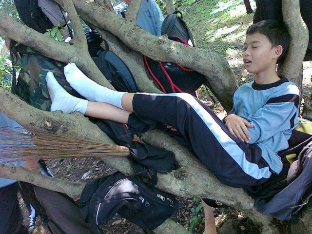 greenschool_smppgii1_10